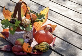 EASILY TRANSFORM YOUR FALL DECOR