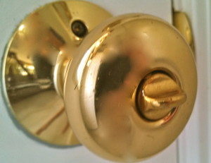 Polished Brass Knob